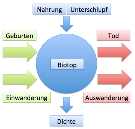 Populationsdynamik